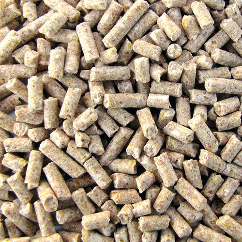 tierfutter Tiernahrung Kornkraft Kükenfutter mit Adisal, pell., 5kg Pellets Tiernahrung, Futter, Geflügel,