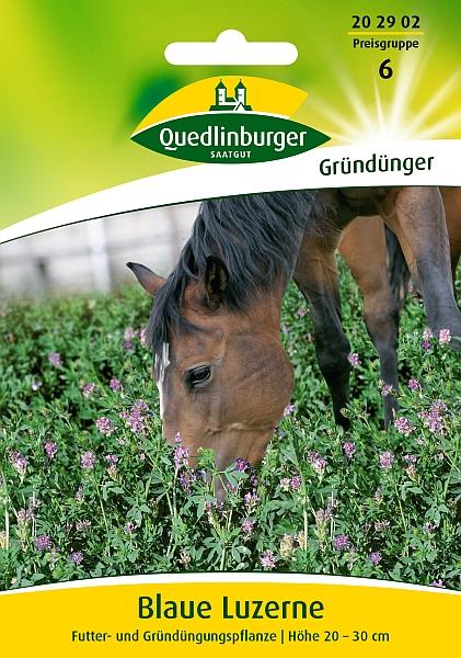 Saatgut   Luzerne   Quedlinburger