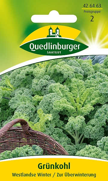 Saatgut   Grünkohl Westlandse Winter   Quedlinburger