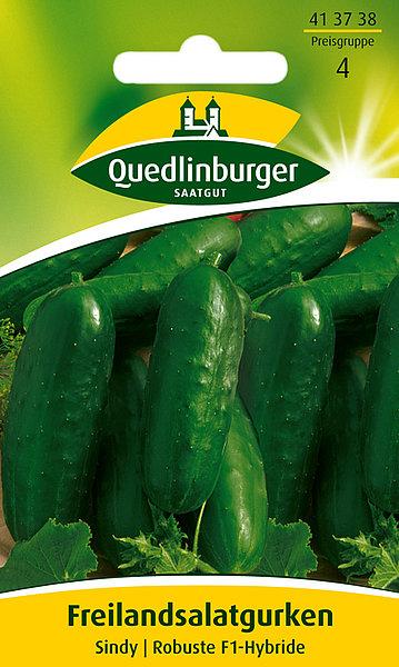 Saatgut   Freiland-Salatgurken - Sindy   Quedlinburger