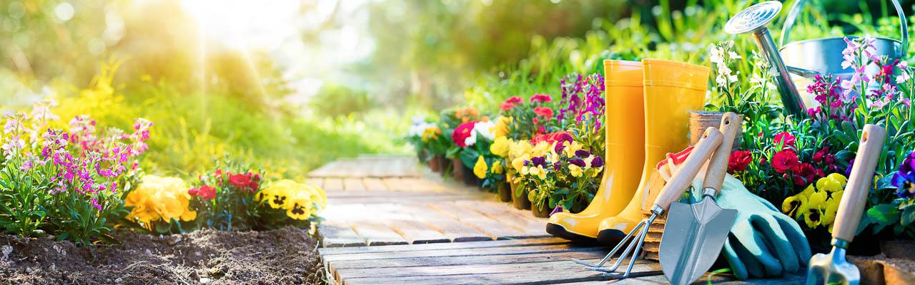 Garten & Freizeit, Gummistiefel, Weg, Pflanzen, Frühling
